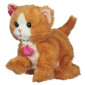 Дэйзи игривый котенок от Furreal Friends Hasbro