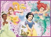 Картонные пазлы - XXL Дисней Принцессы 100 элементов