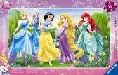 Картонные пазлы с аксессуарами Дисней в рамке Принцессы на прогулке 15 элементов