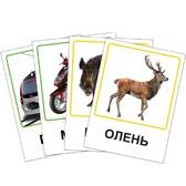 Карточки - Транспорт, Лесные жители, украинский язык. от Vladi Toys (ВладиТойс)
