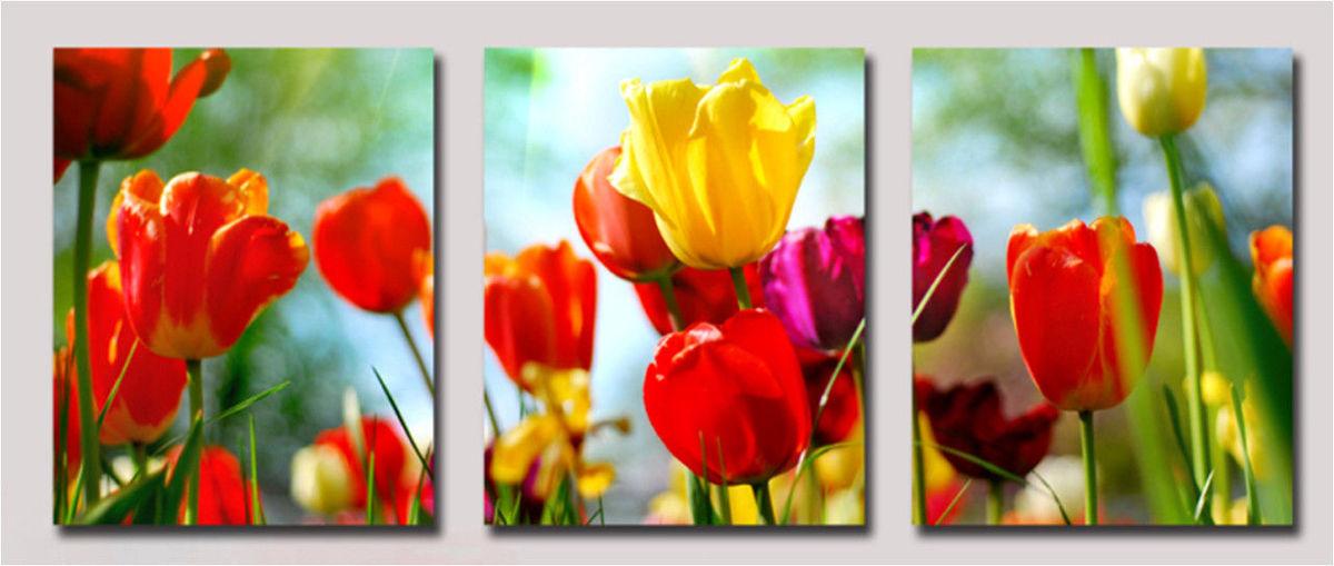 Триптих. Садовые тюльпаны, 50х150см