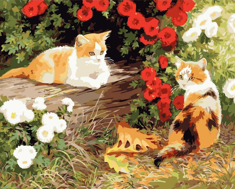 Два кота, 40х50см