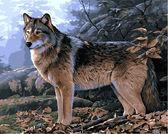 Волк в осеннем лесу, 40х50см