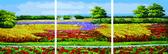 Триптих. Цветущие поля, 50х150см