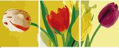 Триптих. Разноцветные тюльпаны, 50х150см