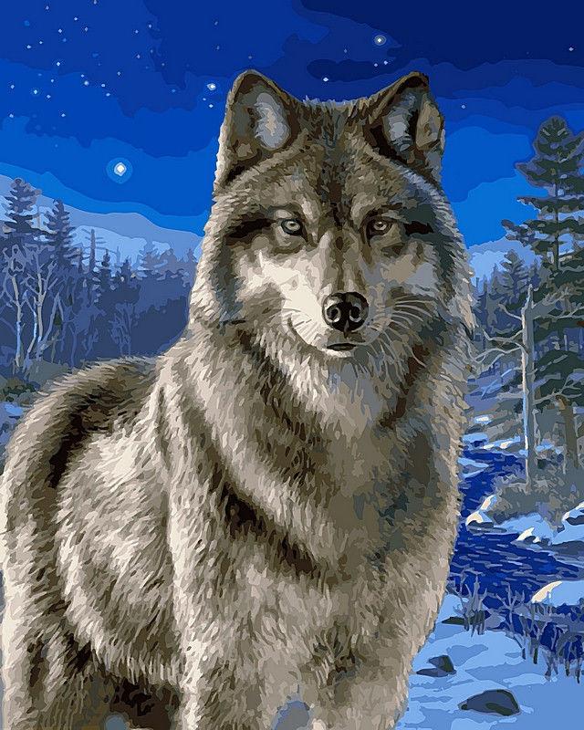 Волк в зимнем лесу, 40х50см