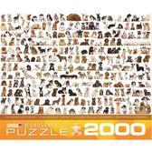 Мир собак, 2000 элементов