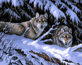 Волки в лесу, 40х50см