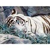 Белый тигр, 40х50см