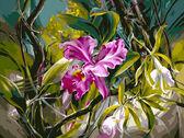 Прекрасные орхидеи, 40х50см