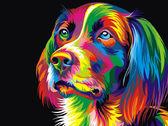 Радужный пес, 30х40см