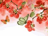 Бабочки и красные орхидеи, 30х40см