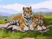 Тигриное семейство, 30х40см