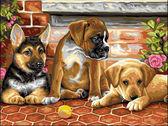 Три щенка и мячик, 30х40см