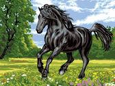 Черный конь, 30х40см
