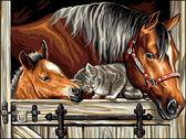 Котенок и лошади, 30х40см