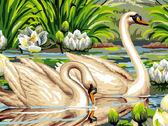 Лебеди и лотосы, 30х40см