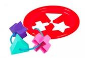 Логическое кольцо - развивающая игрушка-сортер, 5 элементов, Тигрес, красный от Тигрес