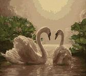 Любовь (лебеди),40 х 50 см