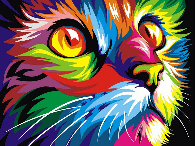Радужный кот,40 х 50 см